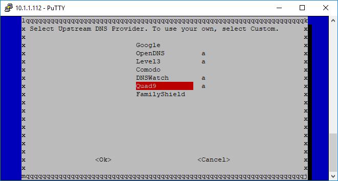 Pi-Hole Installation DNS Server auswählen